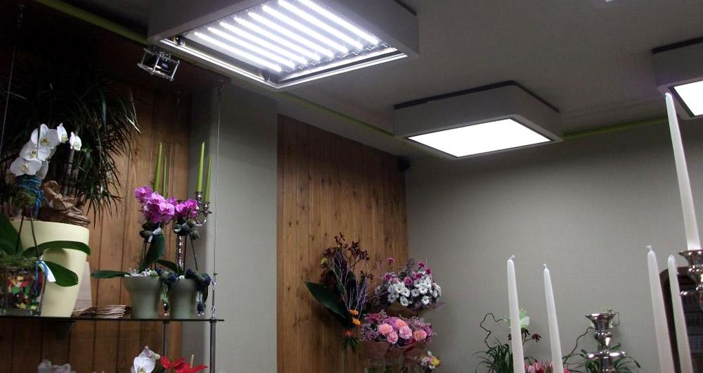 Неосвет Лайтинг модернизира осветлението на магазин